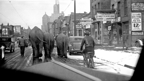 "1930's Buffalo N.Y. notice ""IRA""S"" chili parlor to the right with 10 cent burgers. The circus comes to town"
